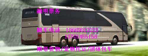从常德到枣庄汽车客车线路查询13701455158汽车查询