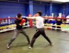 Boxing Club拳击会馆 天津专业拳击俱乐部 私教培训
