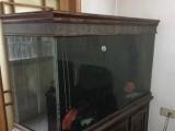 鱼缸高1米7,长1米7,宽0.5米