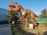 安徽恐龍展出租侏羅紀主題恐龍模型租賃