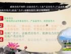 威海企业形象宣传片拍摄制作 微电影 MG动画制作 无人机航拍