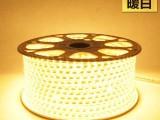 led灯带 3528贴片灯条 高亮超亮 七彩霓虹灯光带 插头另拍