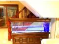 鸿颜水族实木鱼缸古典和简欧款全部是客户家实例