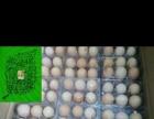 微山湖菜鸡蛋,鸭蛋鹅蛋