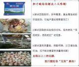 提高蛋鸡胫骨长度体重双达标饲料添加剂龙昌胆汁酸