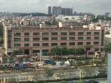 观澜梅观高速口红本独栋1-3层带装修水电齐全8100平可分租