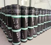 海南SBS改性沥青防水卷材 出售潍坊物超所值的SBS防水卷材
