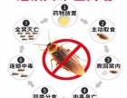 蟑医生~行业**~科技改变生活灭蟑螂就这么简单
