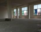 龙川半岛附近新装写字楼220,6万/年,大开间