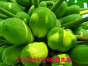 生态蔬菜配送,可靠的蔬菜配送服务商