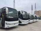 深圳旅游包车 企业租车 商务用车 深港包车服务