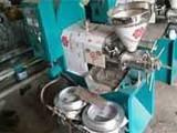 东盈机械厂家直销玉米胚芽油榨油机