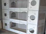 貓籠子雙層籠子貓別墅籠大型貓舍展示籠繁殖籠定制異形尺寸
