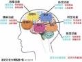 怎么训练孩子的记忆力,记忆力大师教程