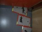 扬州专业灭蟑螂专业灭老鼠白蚁跳蚤公司
