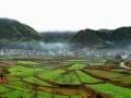 江山农家乐 回归自然,走进原生态,品味民风乡俗