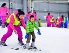 湖南滑雪:长沙三只熊