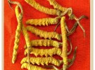全宁波各个区县长期高价上门茅台酒,五粮液以及虫草