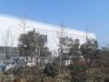 郯城县李庄经济开发区 土地 16000平米