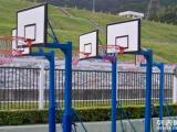 佛山华威户外篮球架 家用篮球架 成人室外移动固定篮球架