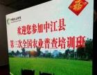 LED屏出租 庆典商演婚庆会议用P3P4精度屏