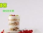市场上具有特色的酸奶饮品行业 1人即可经营排队购买