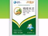 厂家直销大姜苗后专用除草剂禾阔双除对大姜安全