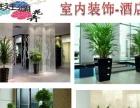 斑斓花卉(冷水滩区柳禾塘街南华大酒店对面200米