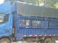 4.2米仓栏货车对外出租