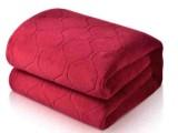 加厚除螨智能调温电热毯(EISVOGEL品牌)