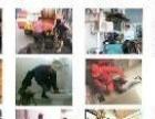 甘蔗马桶疏通电话,乌龙江大道疏通马桶多少钱