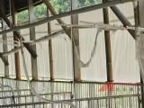 羊圈卷帘-遮阳防雨布-防寒保暖卷帘布