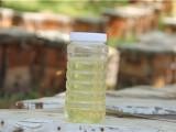 红专蜂业蜂蜜批发