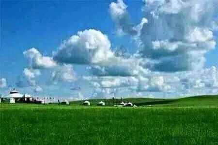 呼伦贝尔草原旅游包车信息 呼伦贝尔草原越野车