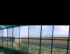 山西省大同市郊区石 土地 1000平米的日光大棚五十