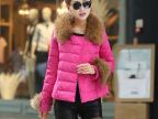 新款韩版正品时尚女式羽绒服 加厚大毛领修身短款保暖外套羽绒服