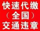 广州年审过户免检等车管业务