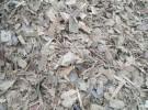 佛山废旧木材破碎厂,出售粉碎木片