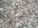 江门市肇庆市中山市,气化炉锅炉木片