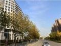 北洋泾 整层二楼商铺 3900平米可做医疗教育现房