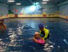 大连儿童学游泳_贝贝鲸德国专业游泳教学一对一