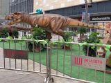 国内大型恐龙展出租 超大规模恐龙展租赁