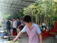 惠州大亚湾农家乐野炊田园自助游