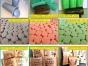 湘潭灭白蚁、老鼠、蟑螂、蚊子、苍蝇、跳蚤、螨虫、臭虫