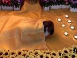 杭州寵物火葬場 寵物善后服務
