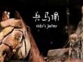 陕西西安旅行社去兵马俑的旅游团