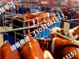 張北肉牛 張北肉牛價格 優質張北肉牛批發/采購