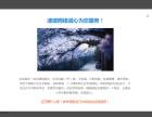 深圳速建网络为您提供代管服务器及建站及优化公众号开发服务