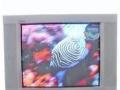 二手TCL王牌29寸电视