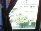 金城商厦青年广场430包电费,拎包入住,超值